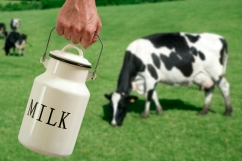 legal-us-raw-milk-sales-behind-rapid-increase-in-outbreaks-cdc